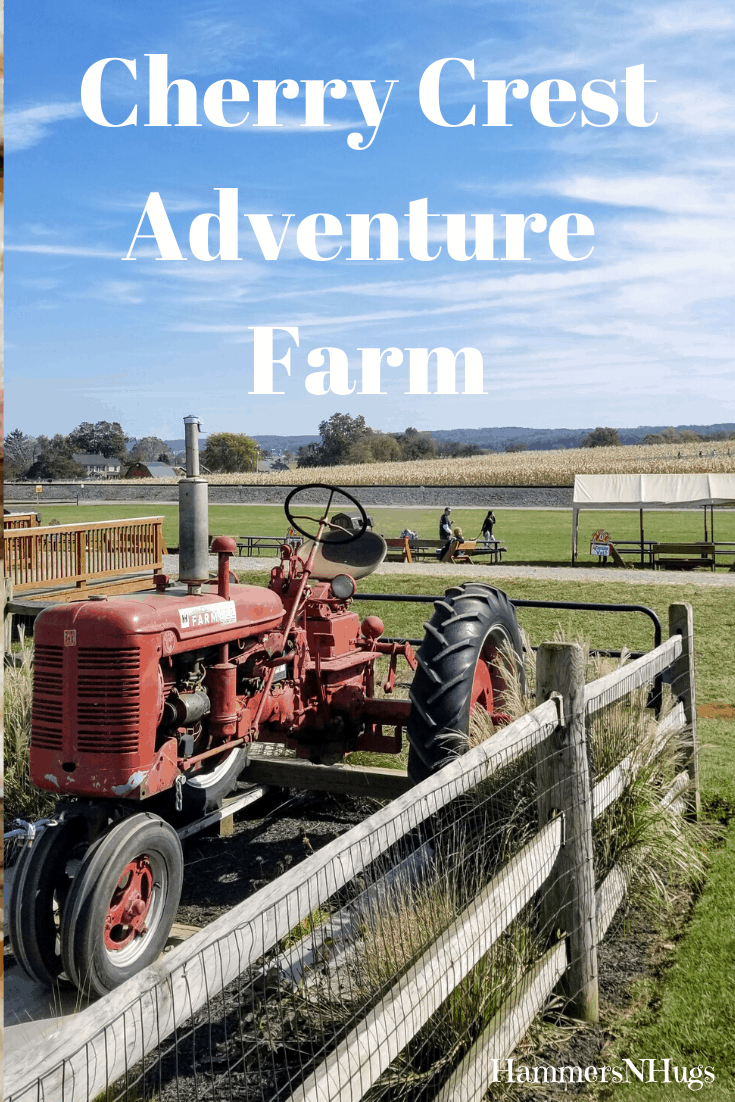 A Day at Cherry Crest Adventure Farm