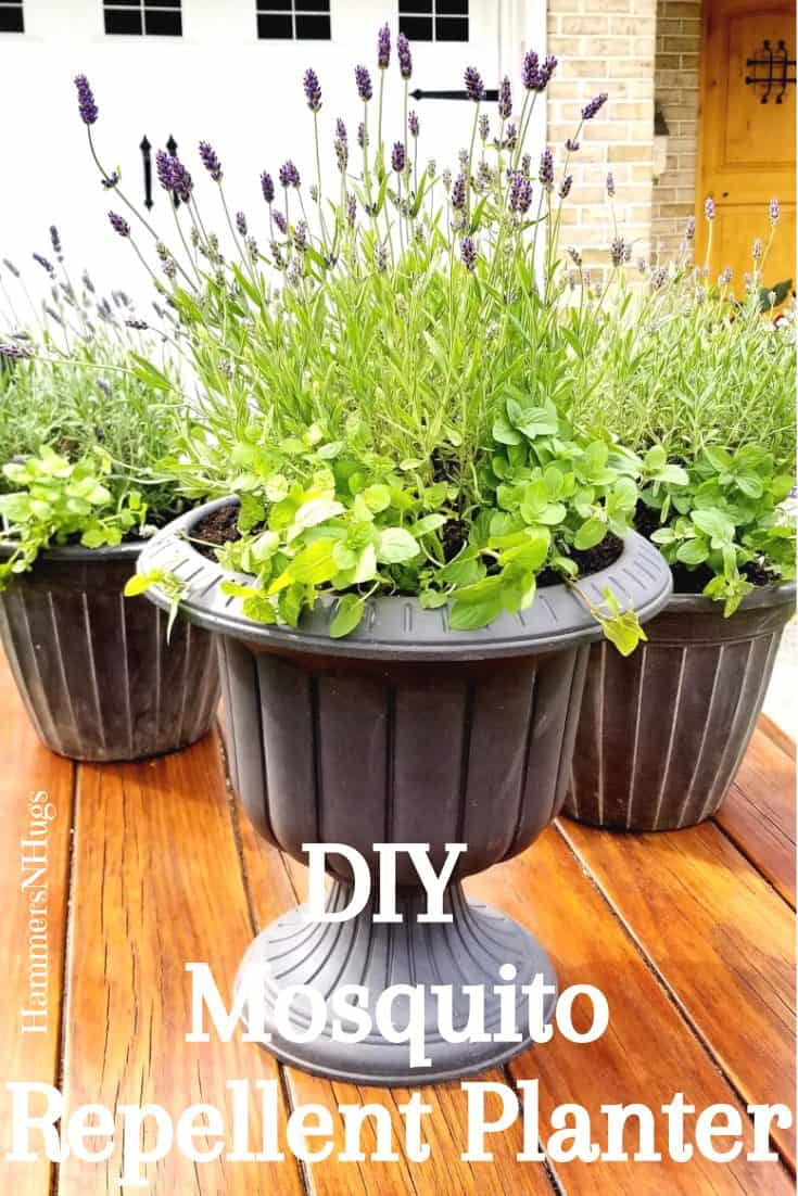 How to Make a Mosquito Patio Planter